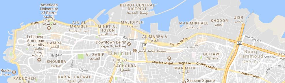 IDM - Fiber Deployment Plan Cablevision Service Area Map on